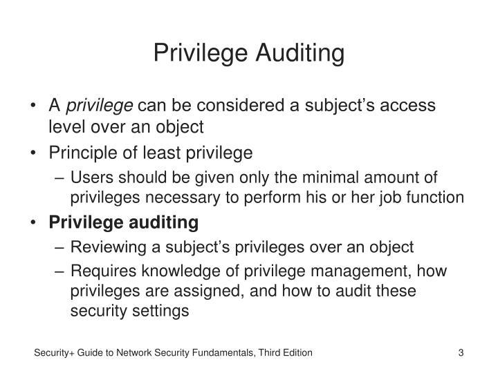 Privilege auditing