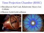 time projection chamber rhic