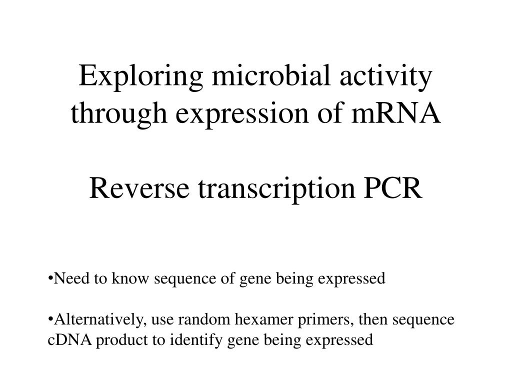 Exploring microbial activity through expression of mRNA