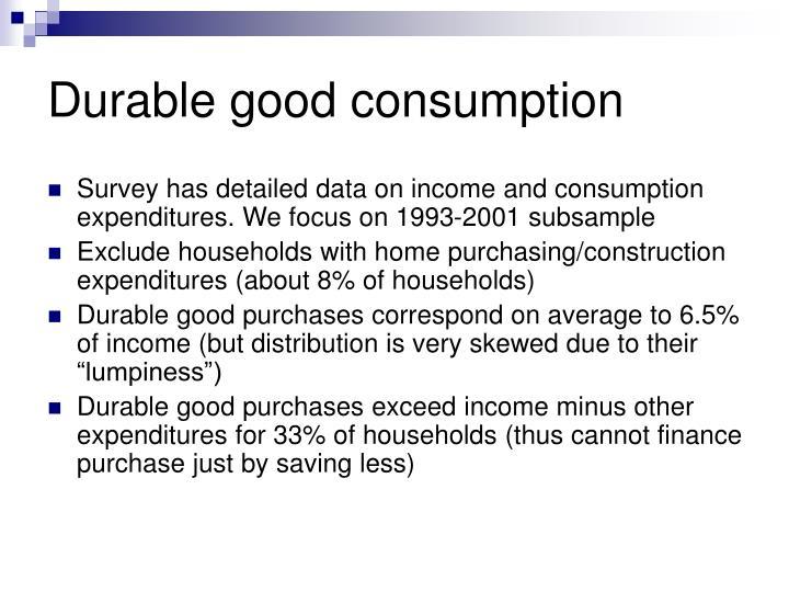 Durable good consumption