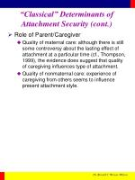 classical determinants of attachment security cont