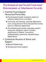 psychological and social contextual determinants of attachment security