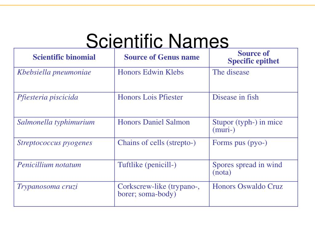 Scientific Names