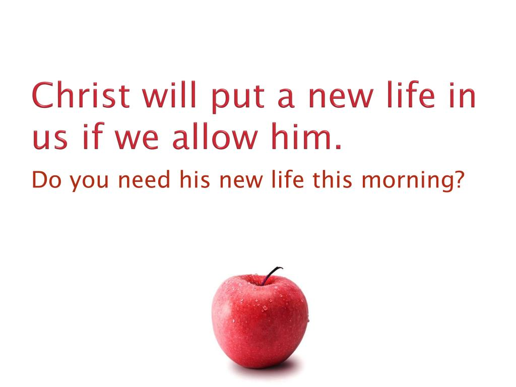 Christ will put a new life in us if we allow him.