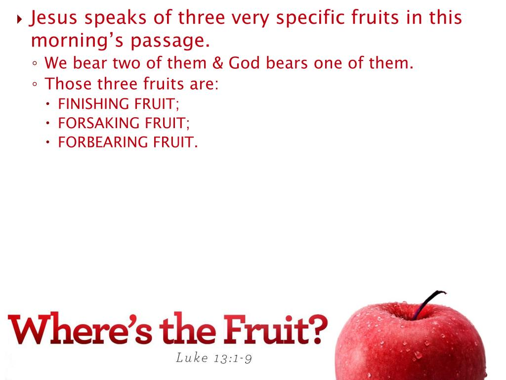 Jesus speaks of three very specific fruits in this morning's passage.