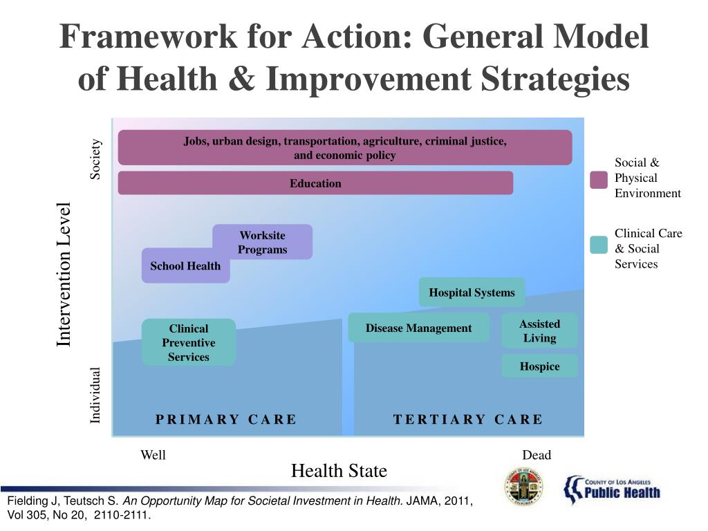 Framework for Action: General Model of Health & Improvement Strategies