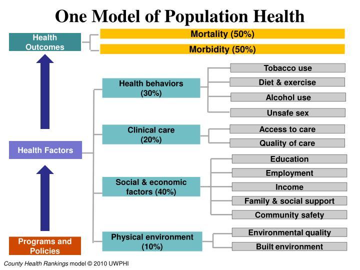 One Model of Population Health