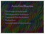acute grief reaction26
