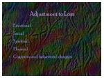 adjustment to loss