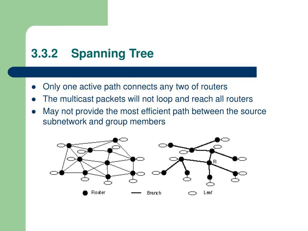 3.3.2    Spanning Tree