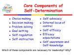 core components of self determination