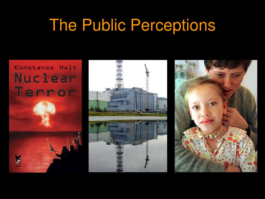 The Public Perceptions