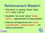 reinforcement wisdom