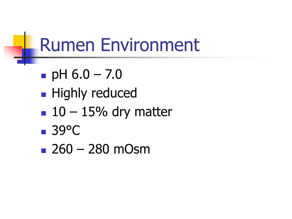 Rumen Environment