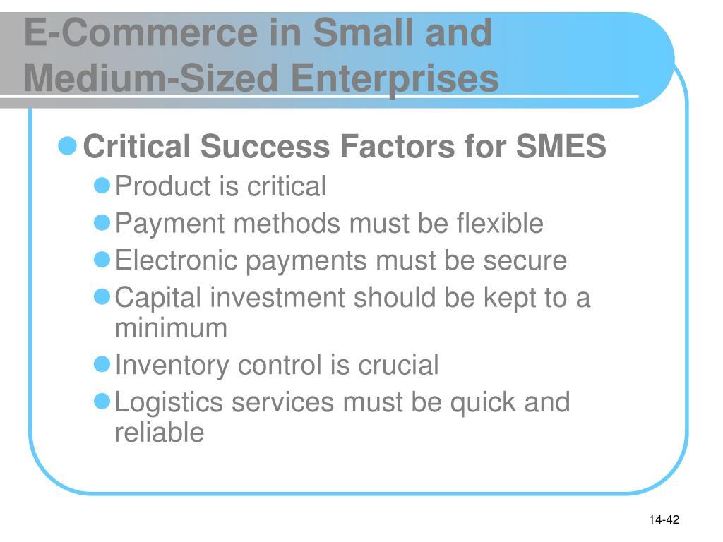 E-Commerce in Small and Medium-Sized Enterprises