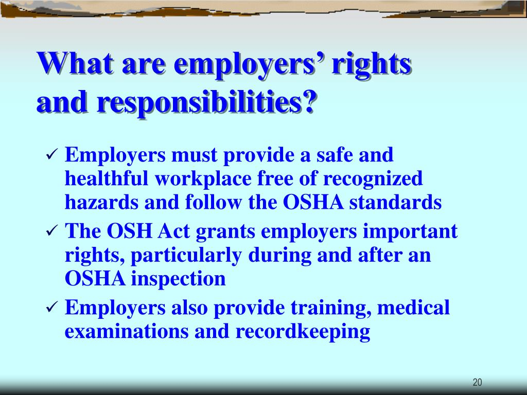 What are employers' rights