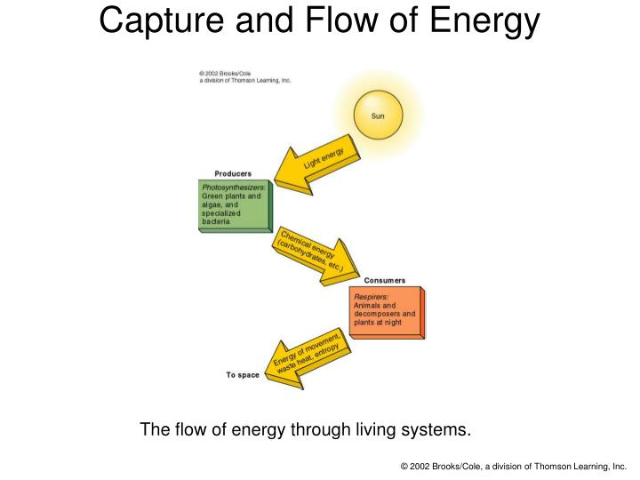 Capture and flow of energy