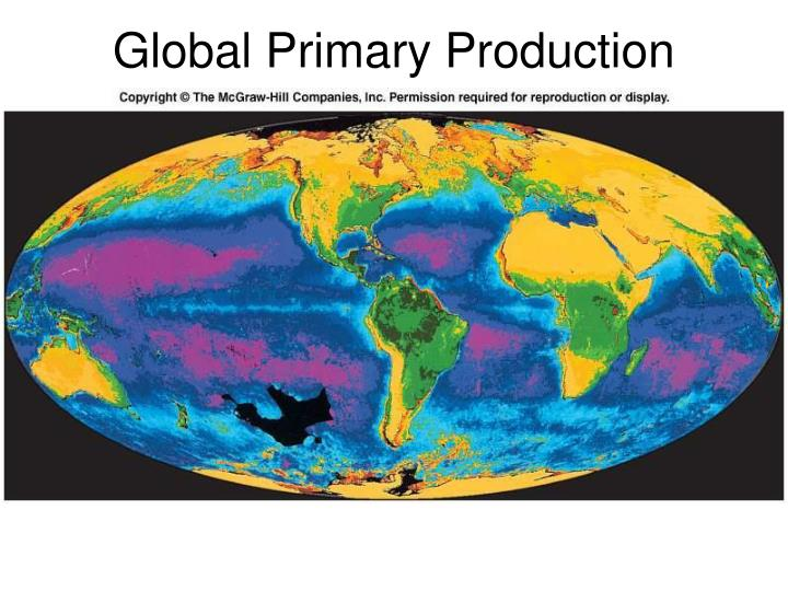 Global Primary Production