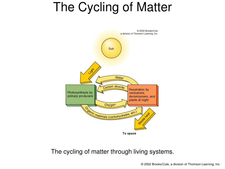 The cycling of matter