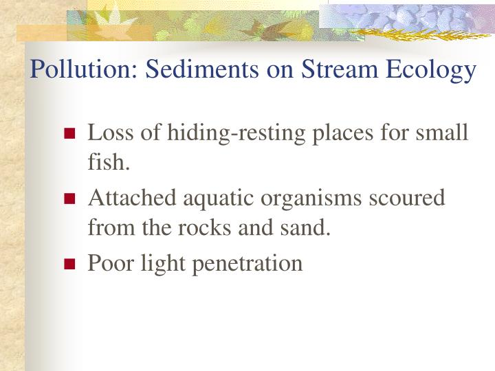 Pollution: Sediments on Stream Ecology