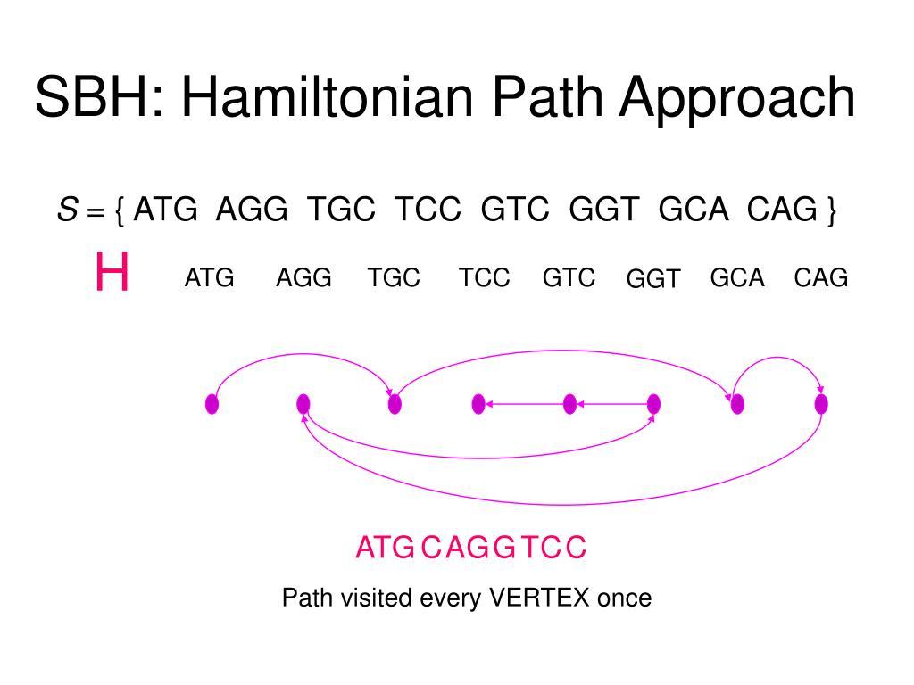 SBH: Hamiltonian Path Approach