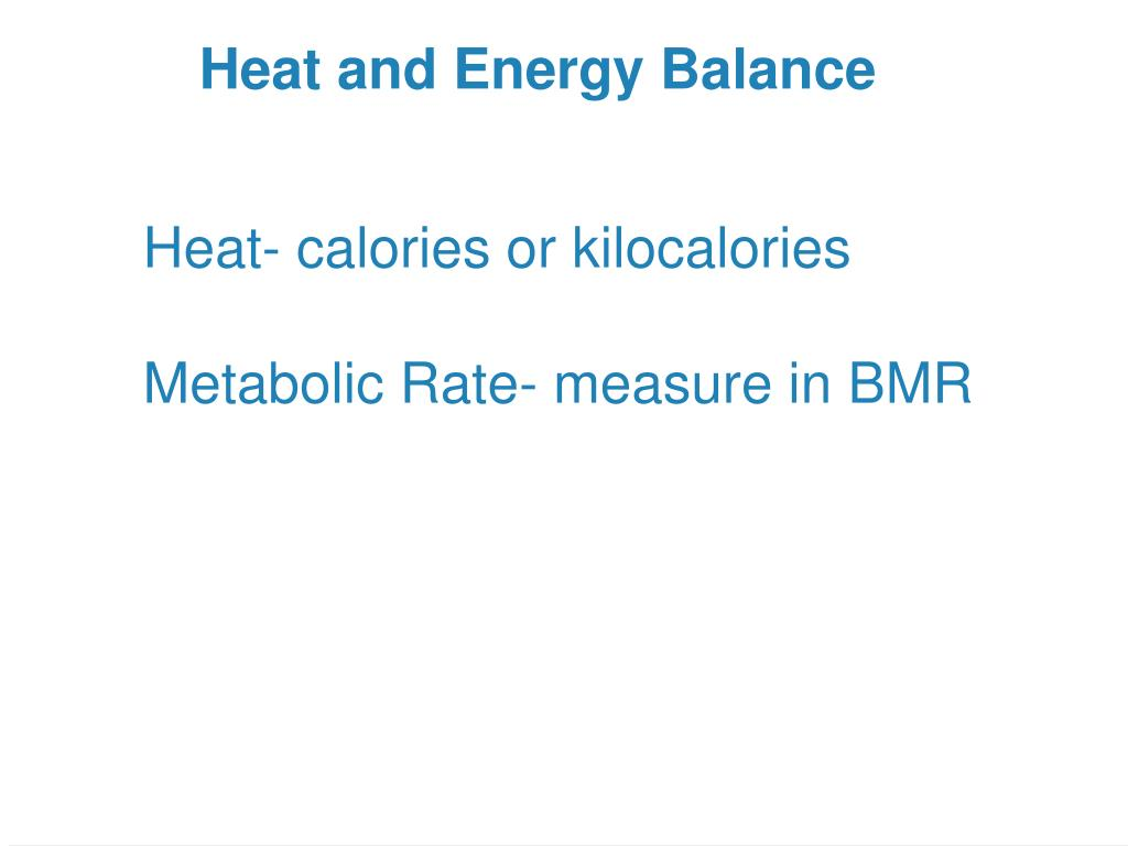 Heat and Energy Balance