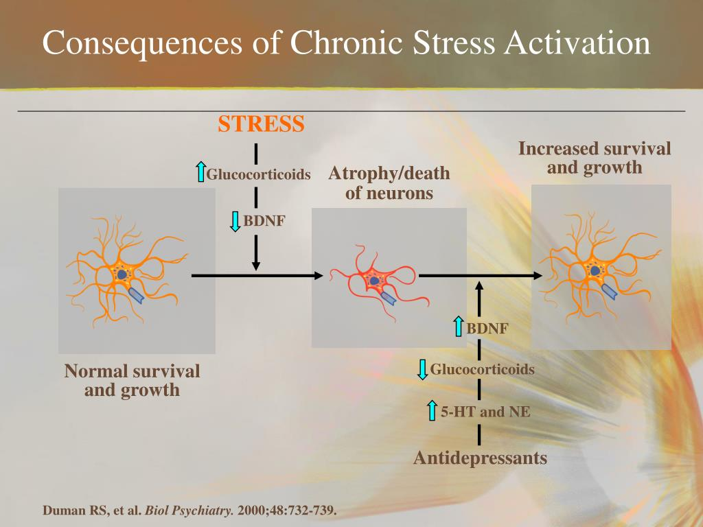 Consequences of Chronic Stress Activation