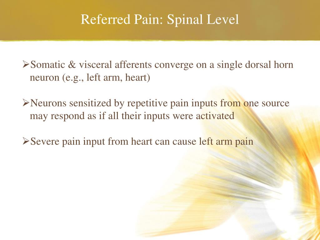 Referred Pain: Spinal Level