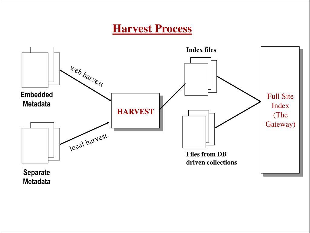 Harvest Process