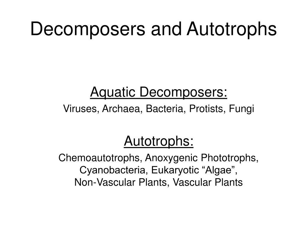 Decomposers and Autotrophs