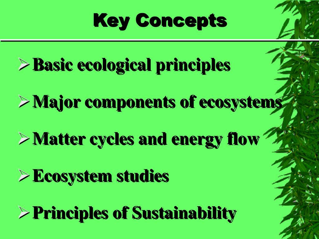 PPT - Chapter 4 Ecosystems: What Are They and How Do They ...