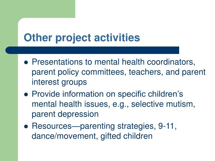 Other project activities