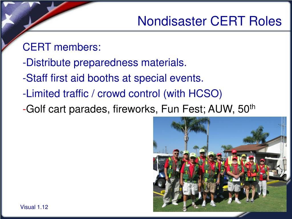 Nondisaster CERT Roles