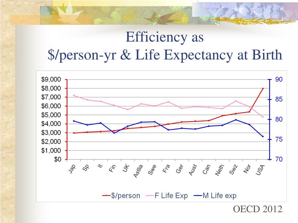 Efficiency as