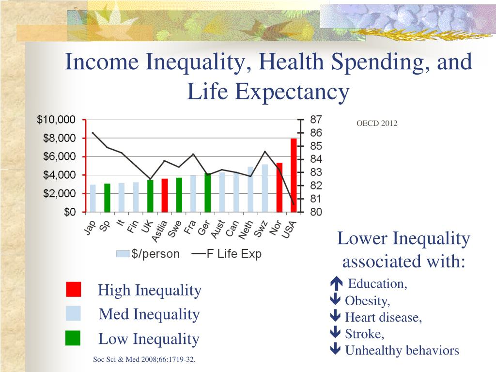 Income Inequality, Health Spending, and Life Expectancy