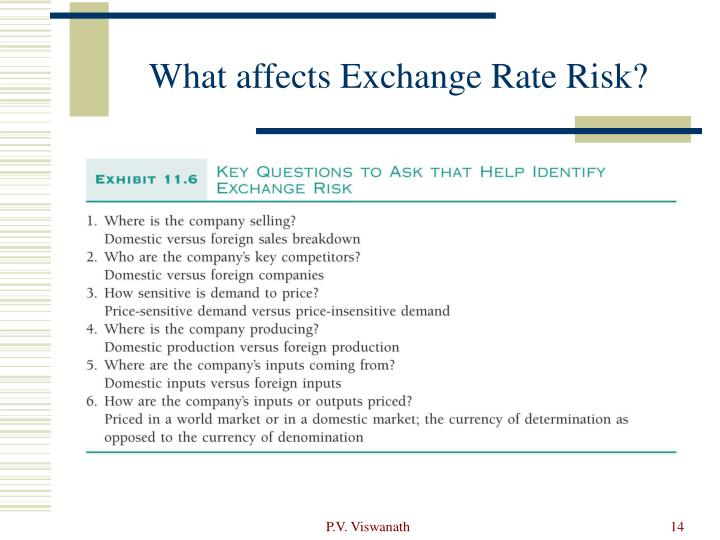What affects Exchange Rate Risk?