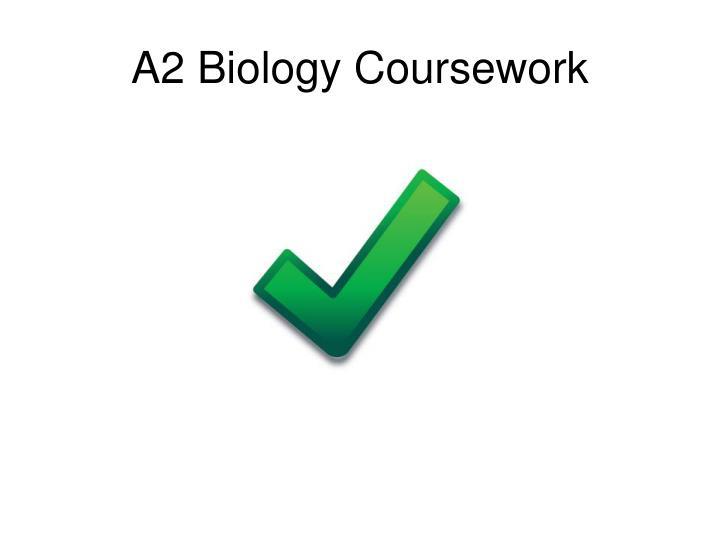 a2 biology coursework n.
