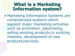what is a marketing information system