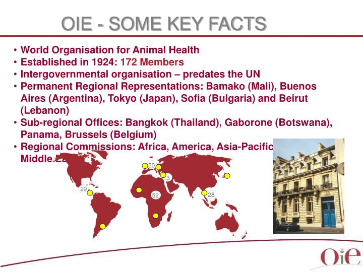 Oie some key facts