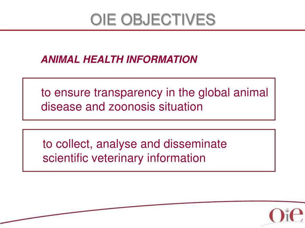 OIE OBJECTIVES