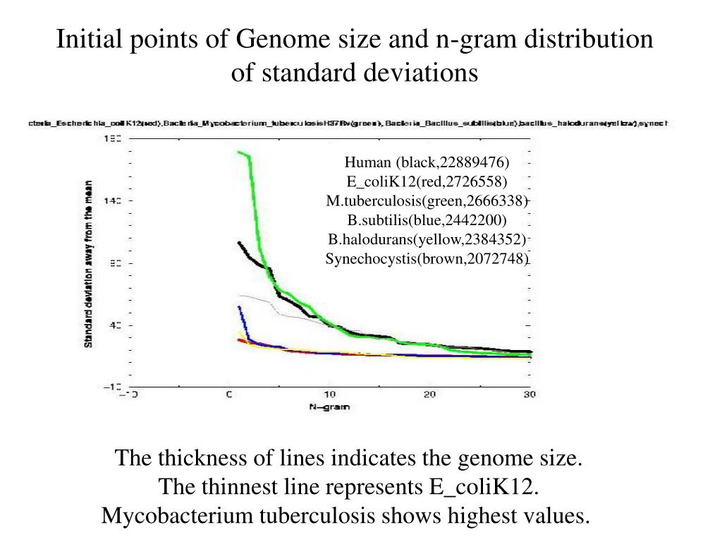 Initial points of Genome size and n-gram distribution of standard deviations