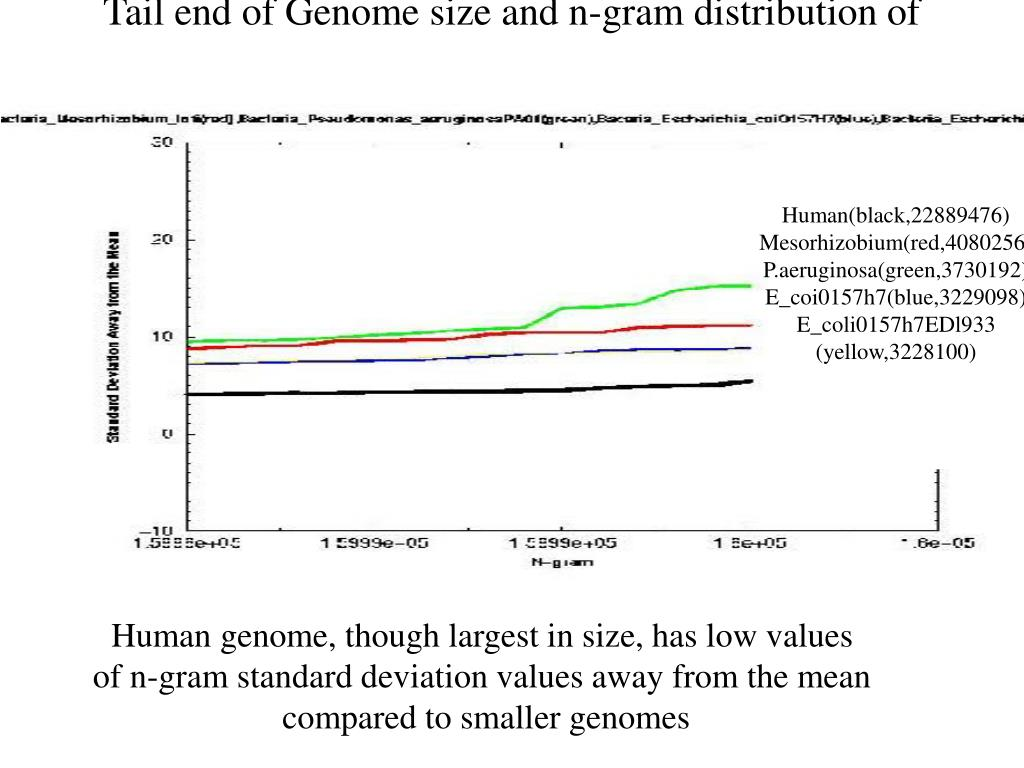 Tail end of Genome size and n-gram distribution of standard deviations