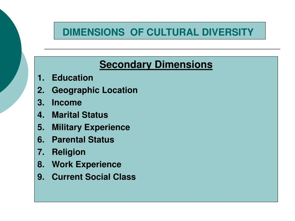 DIMENSIONS  OF CULTURAL DIVERSITY