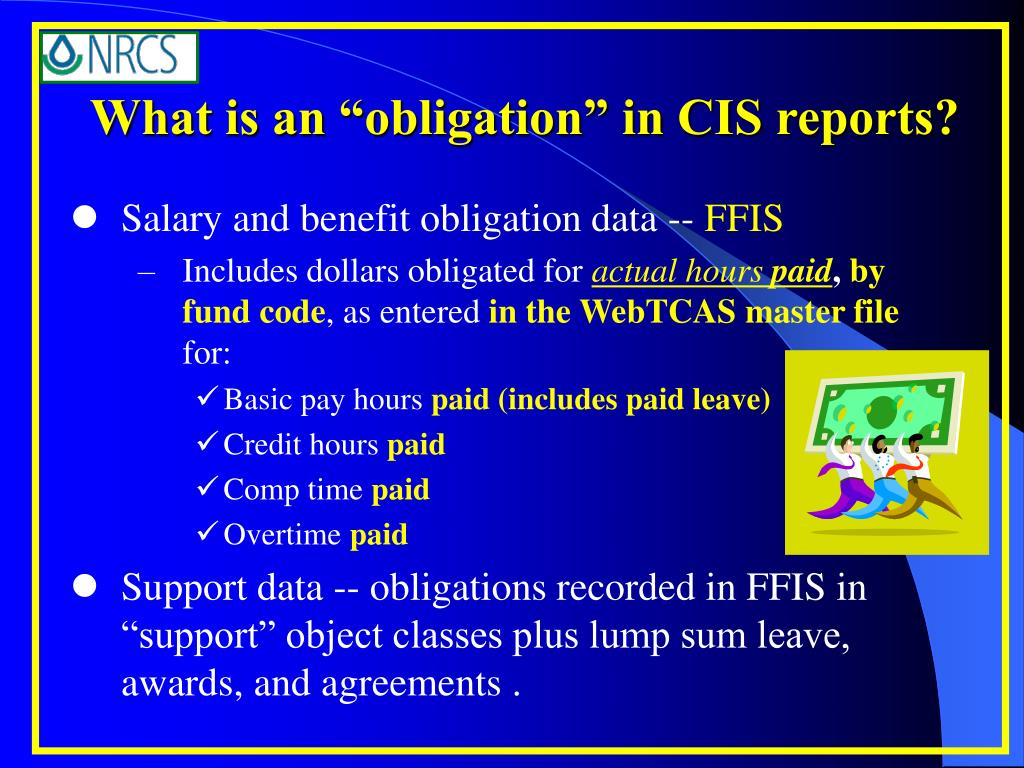 "What is an ""obligation"" in CIS reports?"