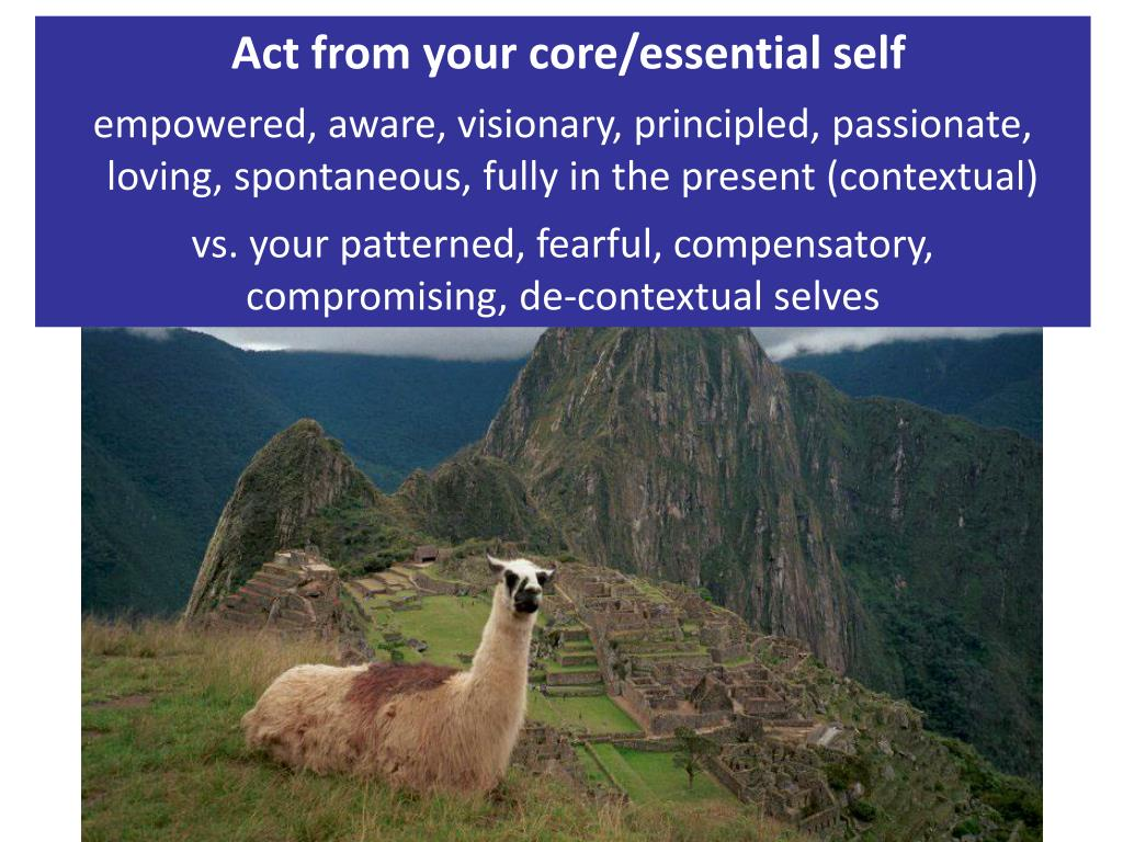 Act from your core/essential self