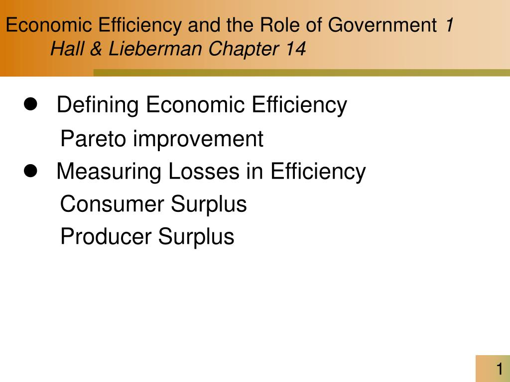 economic efficiency and the role of government 1 hall lieberman chapter 14