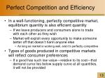 perfect competition and efficiency