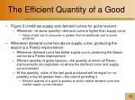the efficient quantity of a good