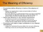 the meaning of efficiency