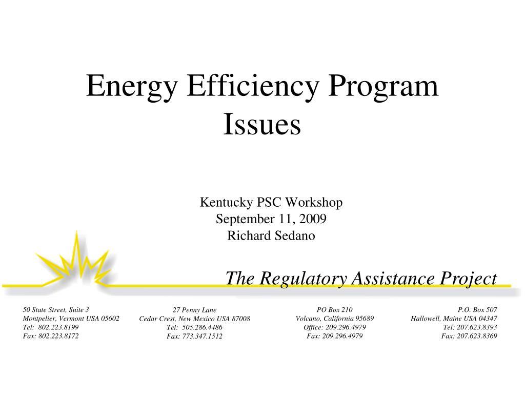 Energy Efficiency Program Issues